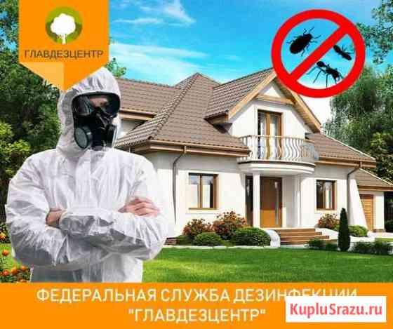 Обработка от клопов тараканов комаров клещей Белго Белгород