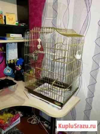 Клетка для попугая Лысьва