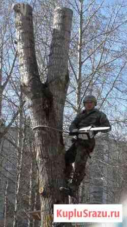 Спилим деревья,выкорчуем пни,копаем ямы в гаражах Северодвинск