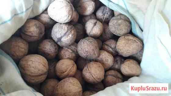 Грецкие орехи Ставрополь