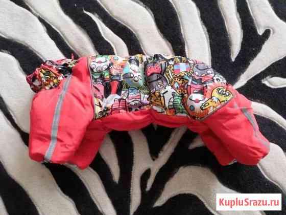 Одежда для собак Муром