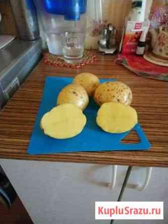 Картофель продукты питания Уяр