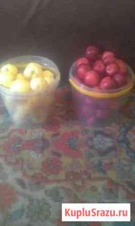 Яблоки Саяногорск