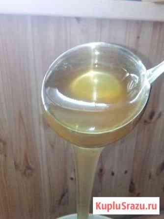 Продукты пчеловодства от производителя Колтубановский