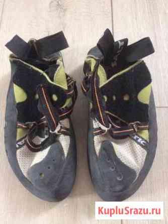Скальные туфли Брянск