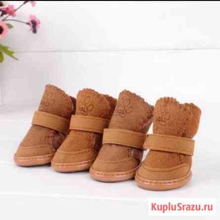 Ботиночки зимние для собачки Новоуральск