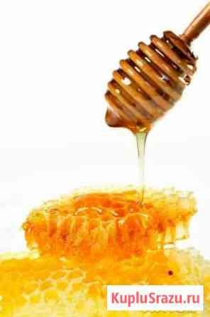 Мёд разноцветье Великие Луки