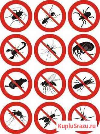 Дезинфектор.Обработка от насекомых Нижний Новгород