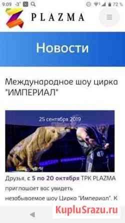 Билет в цирк империал Мурманск