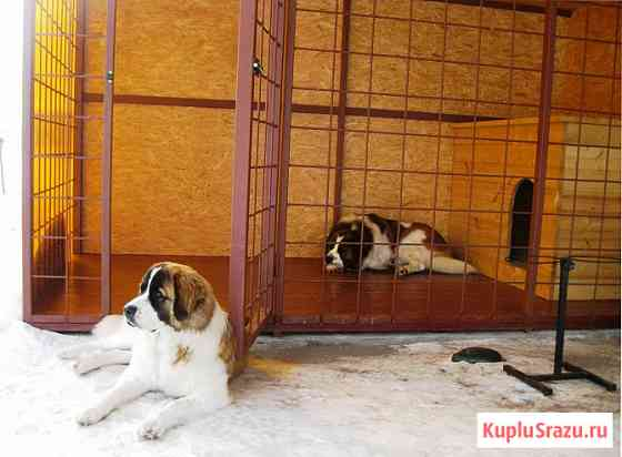 Вольеры для собак по размерам заказчика Лобня