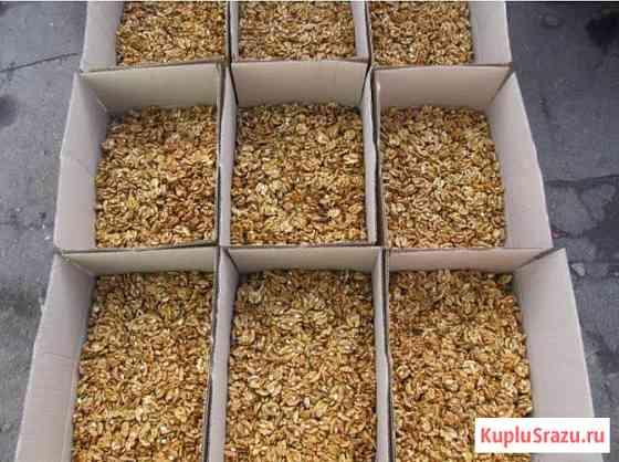 Продаем орехи оптом в Краснодаре. орехи оптом Краснодарский край Краснодар