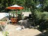 Гостиница для собак с домашней обстановкой