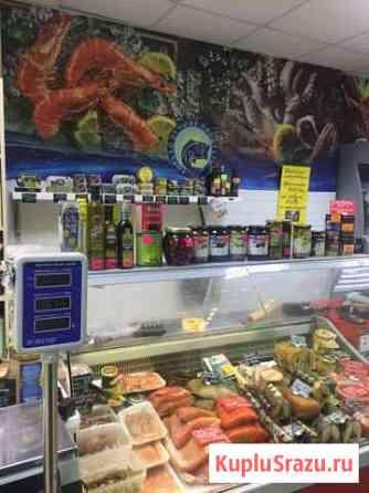 Продам готовый рыбный отдел в магазине Московский