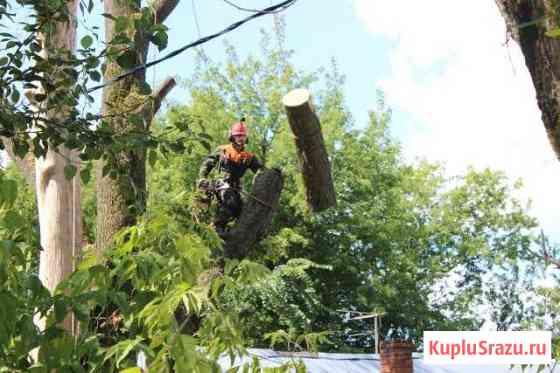 Комплексное удаление деревьев Ивантеевка