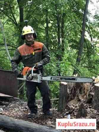 Комплексное удаление деревьев Пушкино