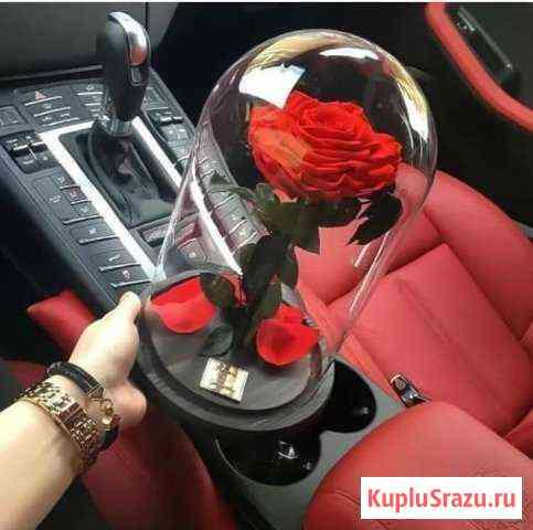 Роза в колбе на подарок девушке Краснодар