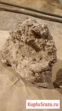 Коралл камень туф для аквариума и декора Пушкин