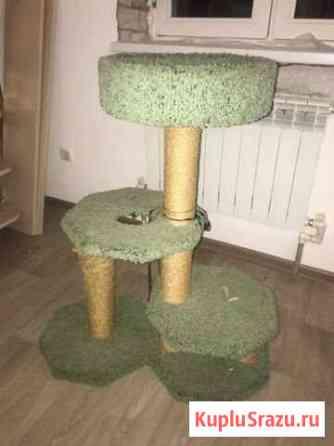 Когтеточка, Домик для кошки Высокая Гора