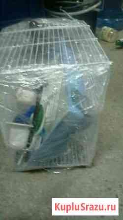 Продам клетку для попугая совсем прибамбасами Златоуст