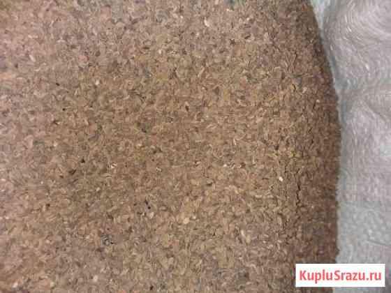 Семена фацелии Кулебаки