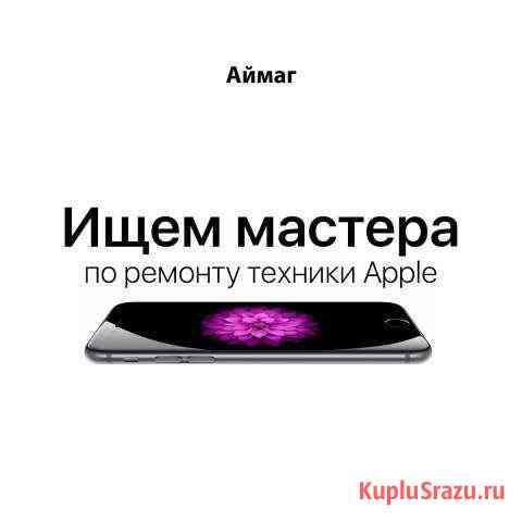 Мастер по ремонту техники Apple Архангельск