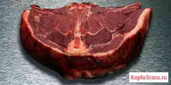 Мясо конина Чишмы
