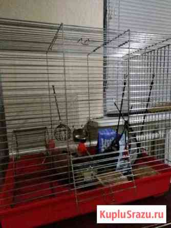 Клетка для грызунов Карачев