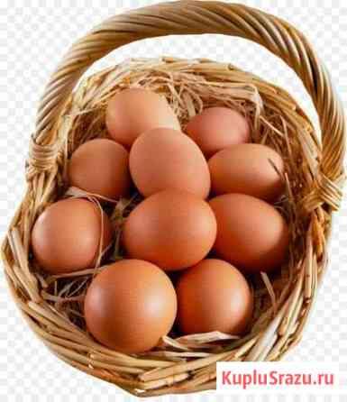 Яйца куриные Ковров