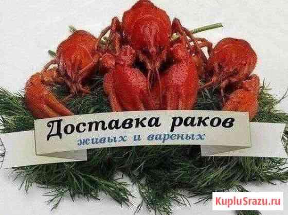 Живые раки Иваново