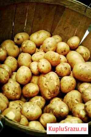 Картофель с доставкой Глинищево