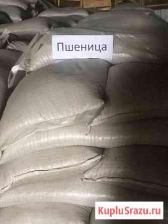 Зерно зерносмеси комби корм премиксы Вологда