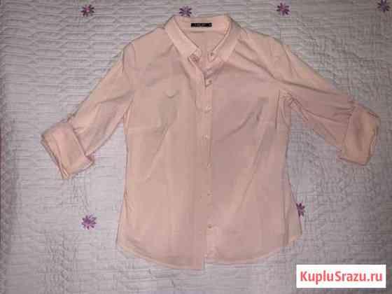 Рубашки, джемпера Петрозаводск