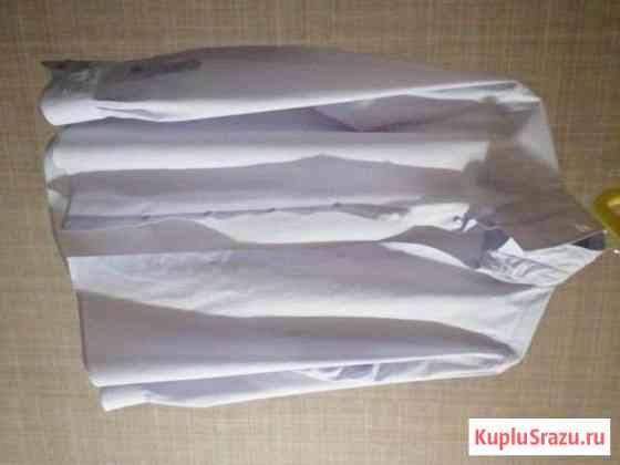Рубашка мужская Сыктывкар