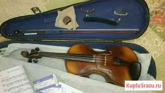 Скрипка Кострома