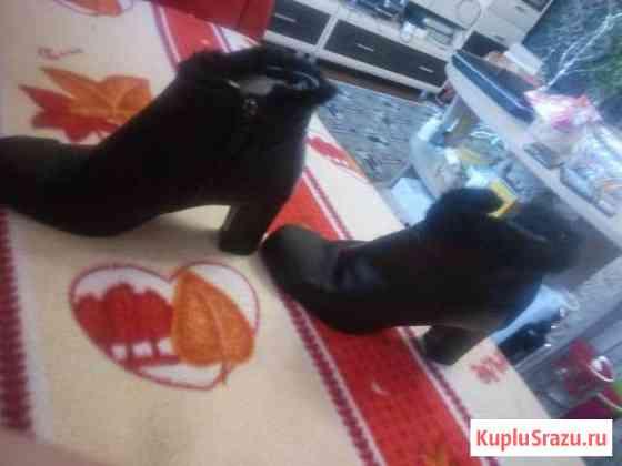 Женские сапожки Шадринск