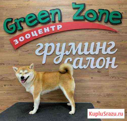 Стрижка собак и кошек Магадан