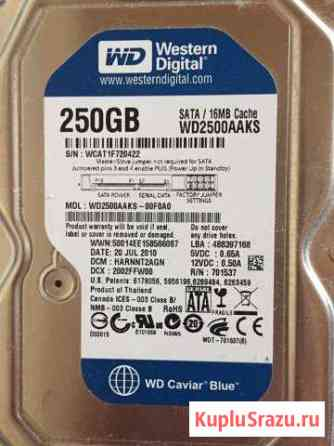 HDD WD 250 Gb Калуга