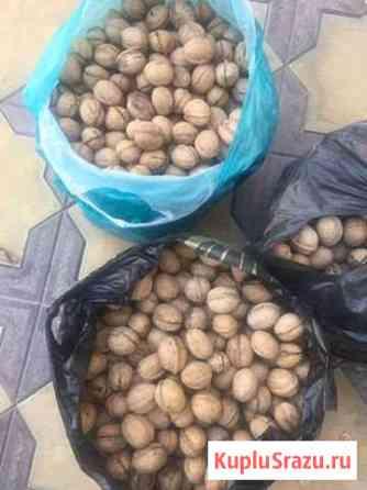 Грецкие орехи Учкекен