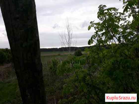 Участок 37 сот. (ИЖС) Усть-Кишерть