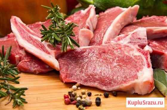 Баранина, тушка, мясо барана Нерехта