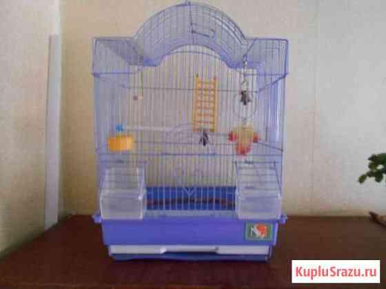 Клетка для птиц Балаково