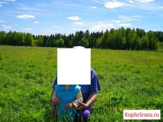 Участок 50 сот. (СНТ, ДНП) Соликамск