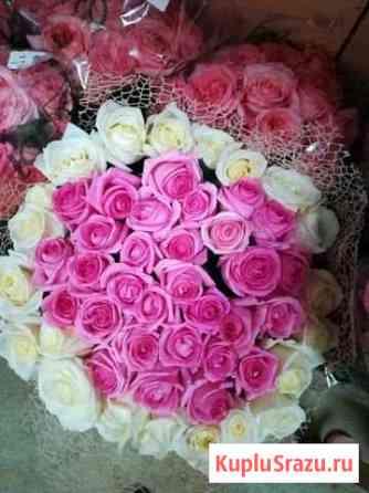 33 розы Роза букет 24ч Ставрополь