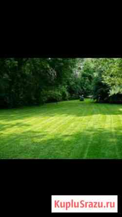 Стрижка газона, благоустройства и уборка территори Алагир
