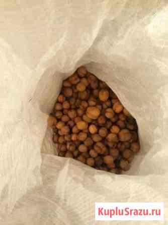 Грецкий орех Татарка