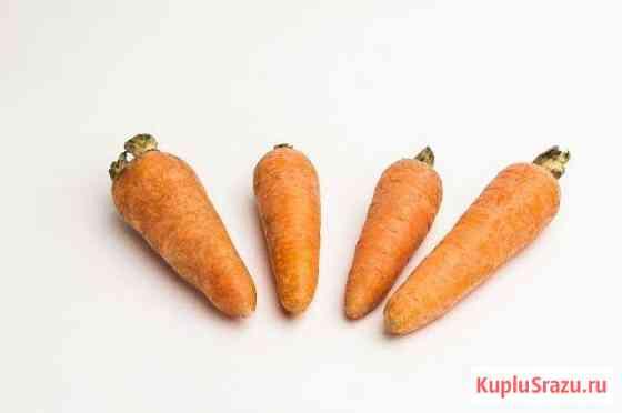 Морковь свежая Тюмень