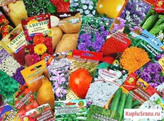 Семена для сада и огорода Абакан