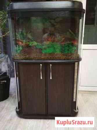 Аквариум 140 литров Альметьевск