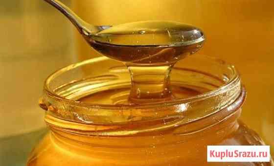 Мёд цветочный натуральный (своя пасека) Бобров