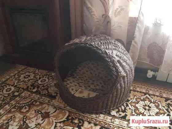 Домик для кошки Краснодар